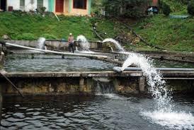 Kể từ ngày 01/7/2020, áp dụng quy định mới về phí bảo vệ môi trường với nước thải