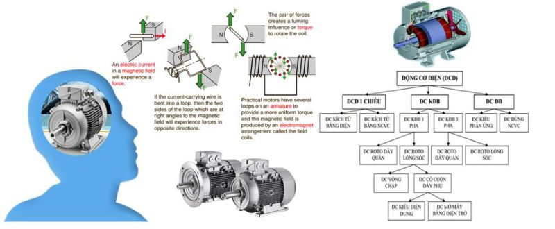 Động cơ điện là gì? Phân loại, Nguyên tắc hoạt động và ứng dụng của động cơ điện